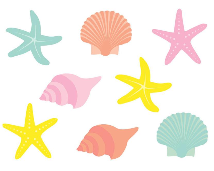 Seashell Clipart & Seashell Clip Art Images.