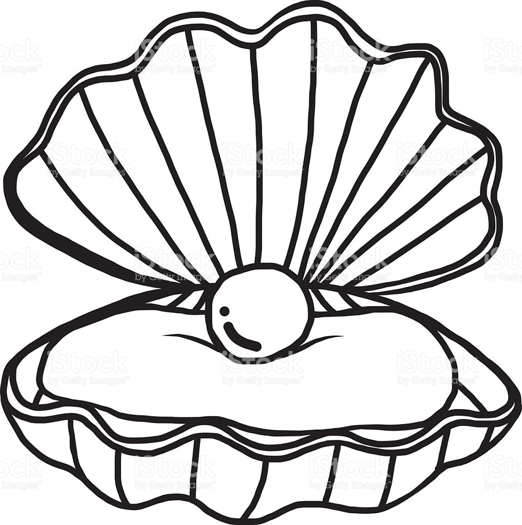 Shell Clipart Black And White.