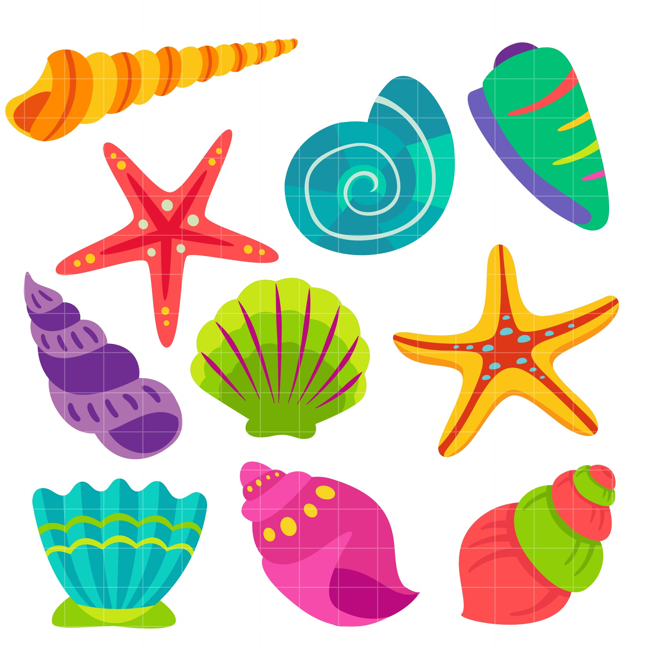 Seashell Clipart for free download.