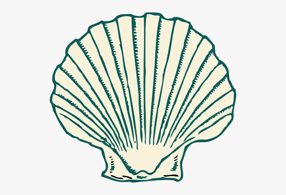 Shell Clip Art.