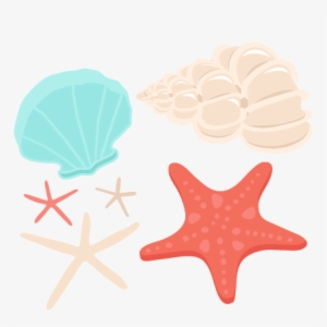 Seashell Clipart PNG, Transparent Seashell Clipart PNG Image.