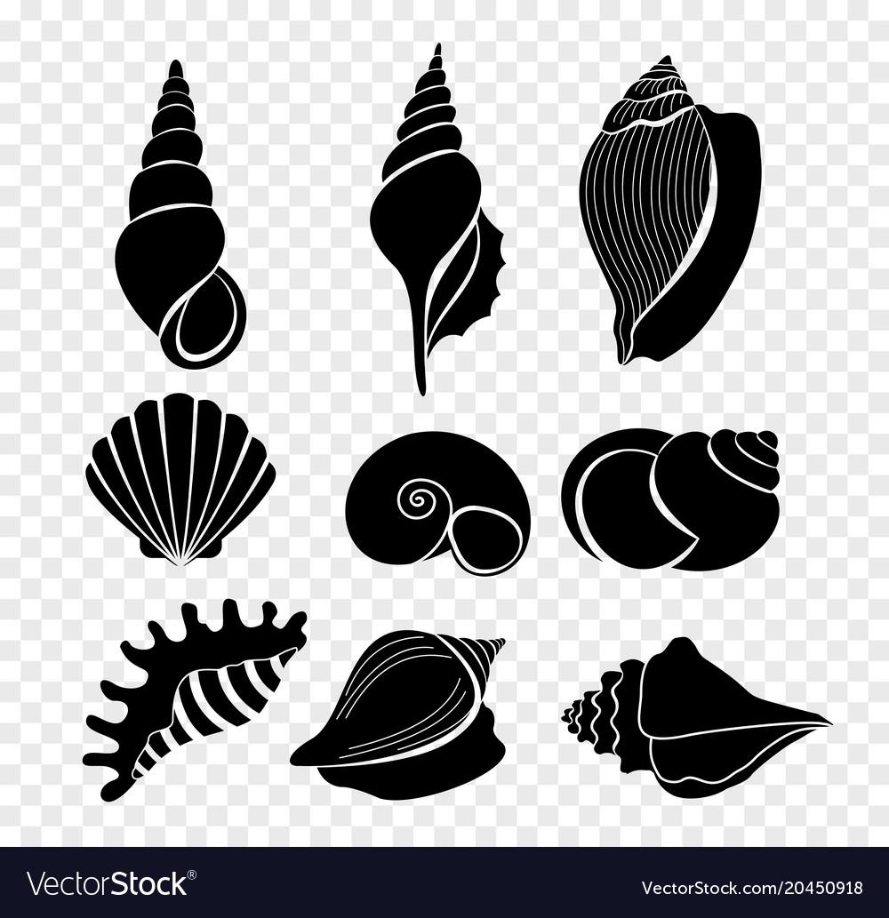 Set of seashells silhouettes.