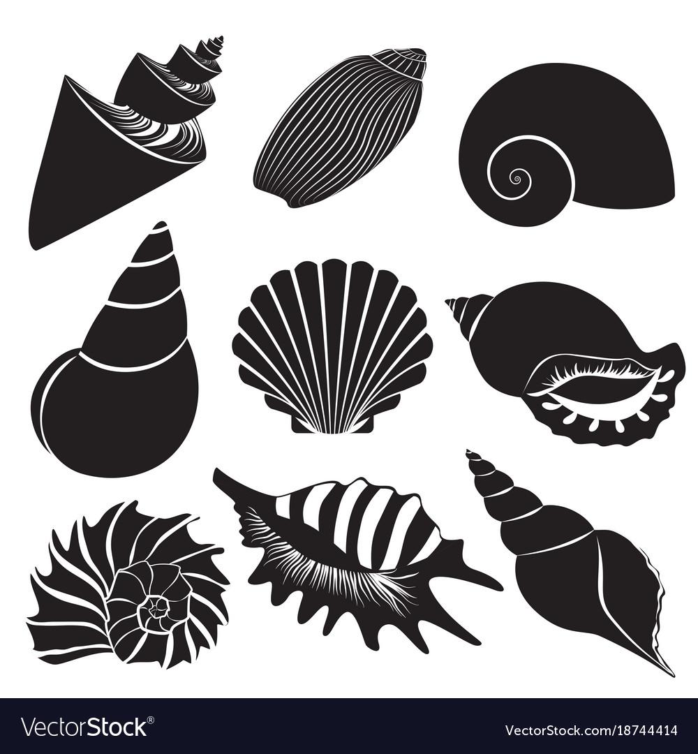 Sea shells seashell silhouettes set.