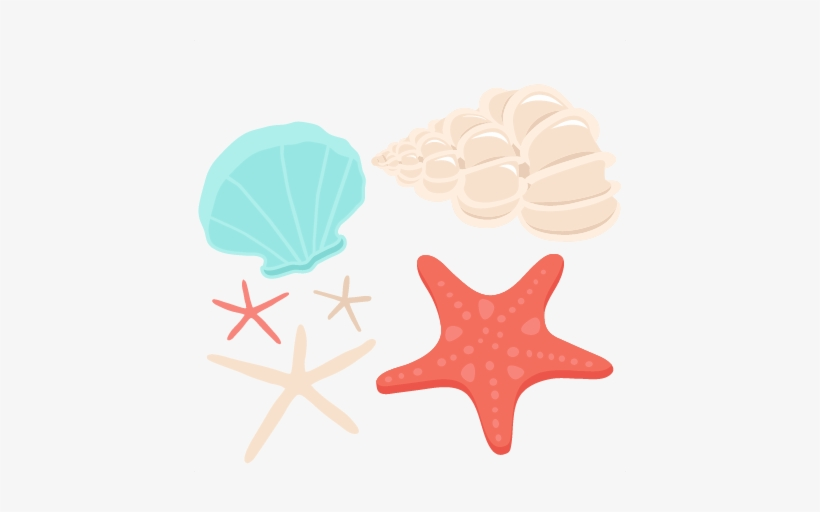 Best Pictures Of Conch Shells Transparent Background.