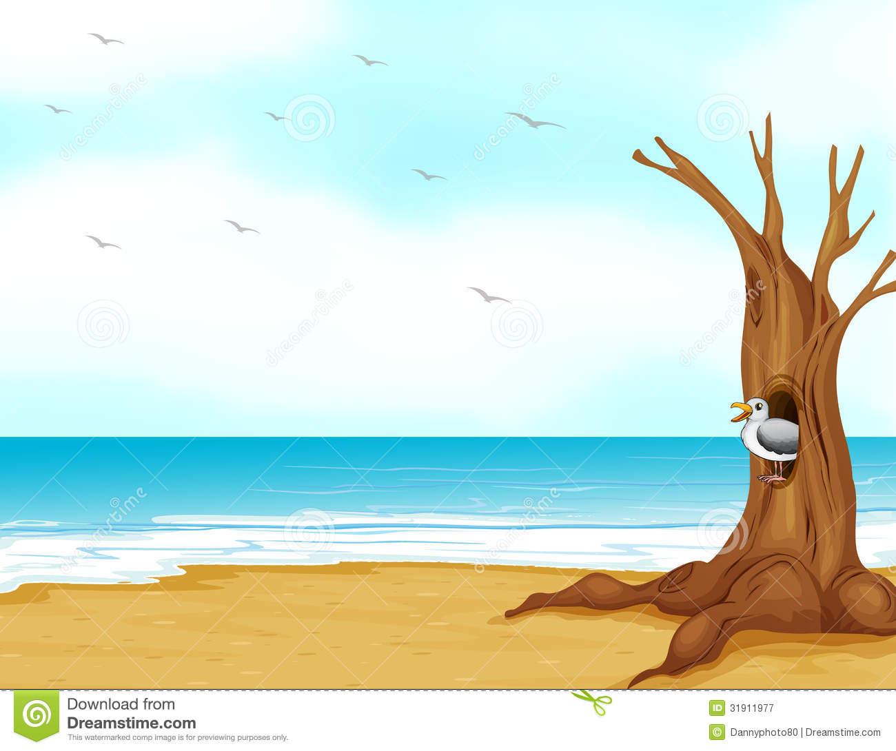 Seashore Clipart.