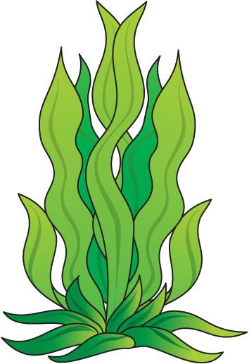 Cartoon seaweed clipart.