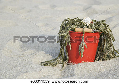 Stock Photograph of Bucket of seaweed at beach e00011559.