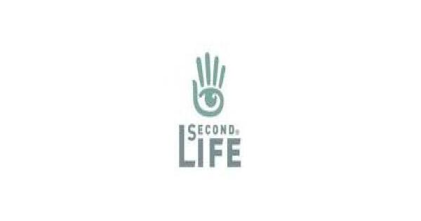 Second Life Website Review.