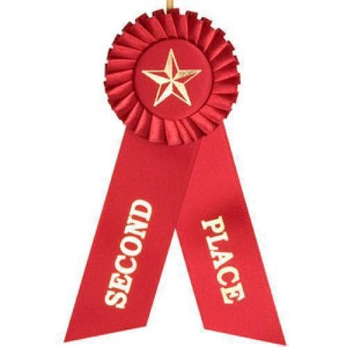 2nd Place Rosette Ribbon Equestrian Trophy Awards.