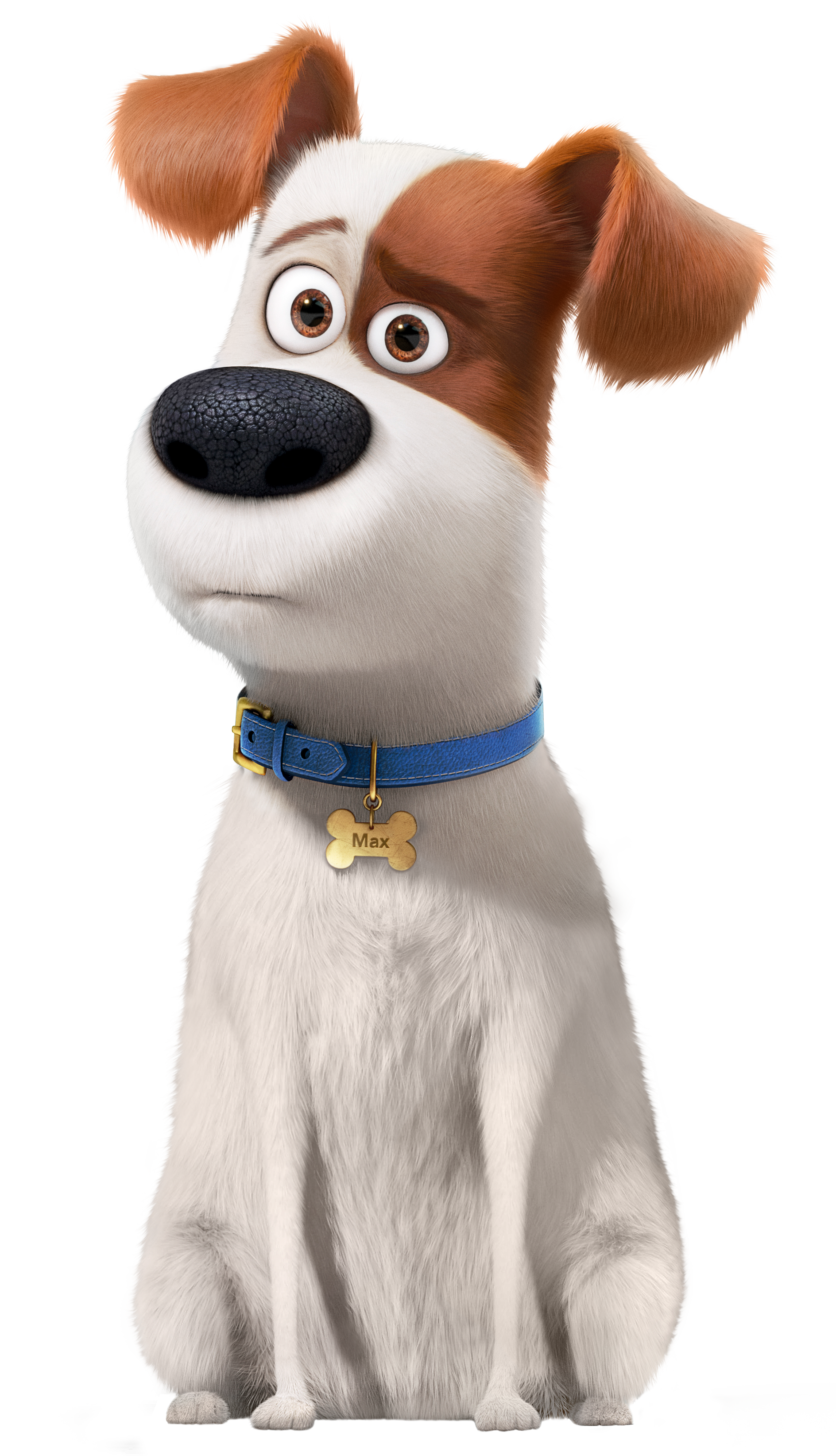 The Secret Life of Pets Max Transparent PNG Image.