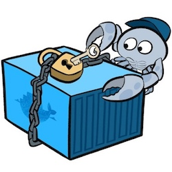 Container & Microservice Security.