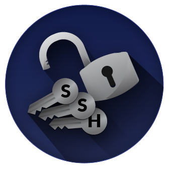 Four SSH Vulnerabilities You Should Not Ignore.