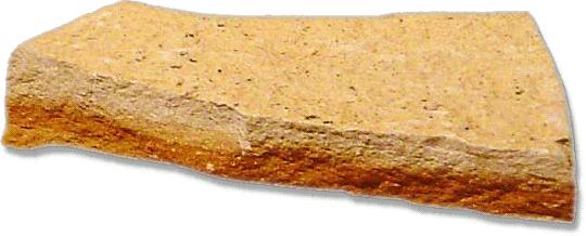 Shale sedimentary rock.