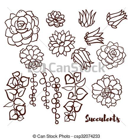 Sedum succulent Clip Art Vector and Illustration. 21 Sedum.