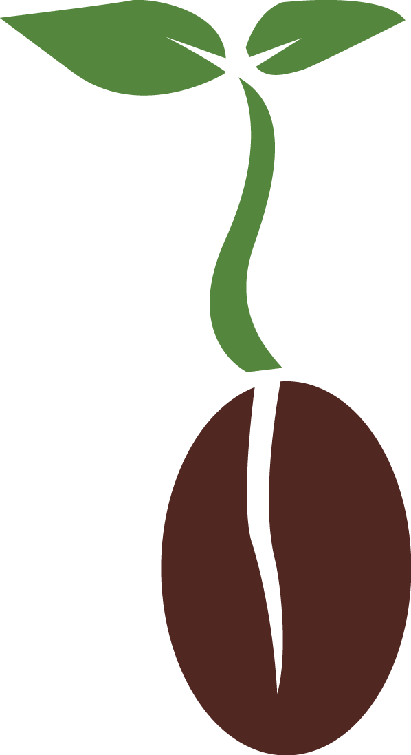 Download Seed PNG Clipart.