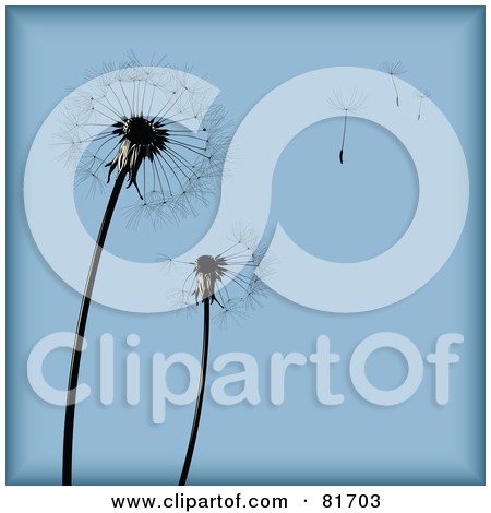 Clipart dandelion seed head.