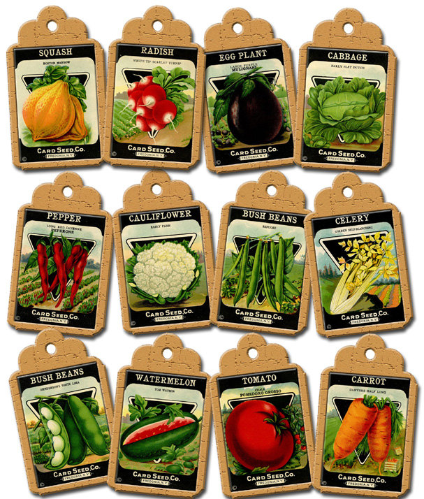 VeGeTaBLe SeeD PaCkETs ViNtAgE ArT Hang/Gift Tags/Labels.