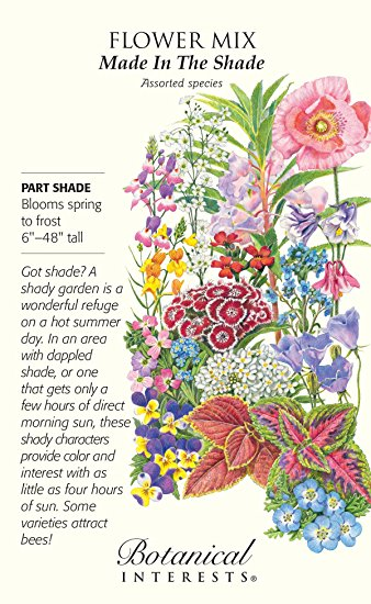 Amazon.com : 'Made in the Shade' Seed Mix.