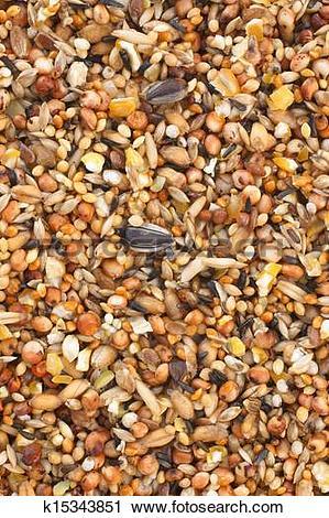 Stock Photography of Bird seed mix k15343851.