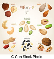 Nut Illustrations and Stock Art. 15,394 Nut illustration and.