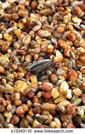 Stock Images of Bird seed mix k15343116.