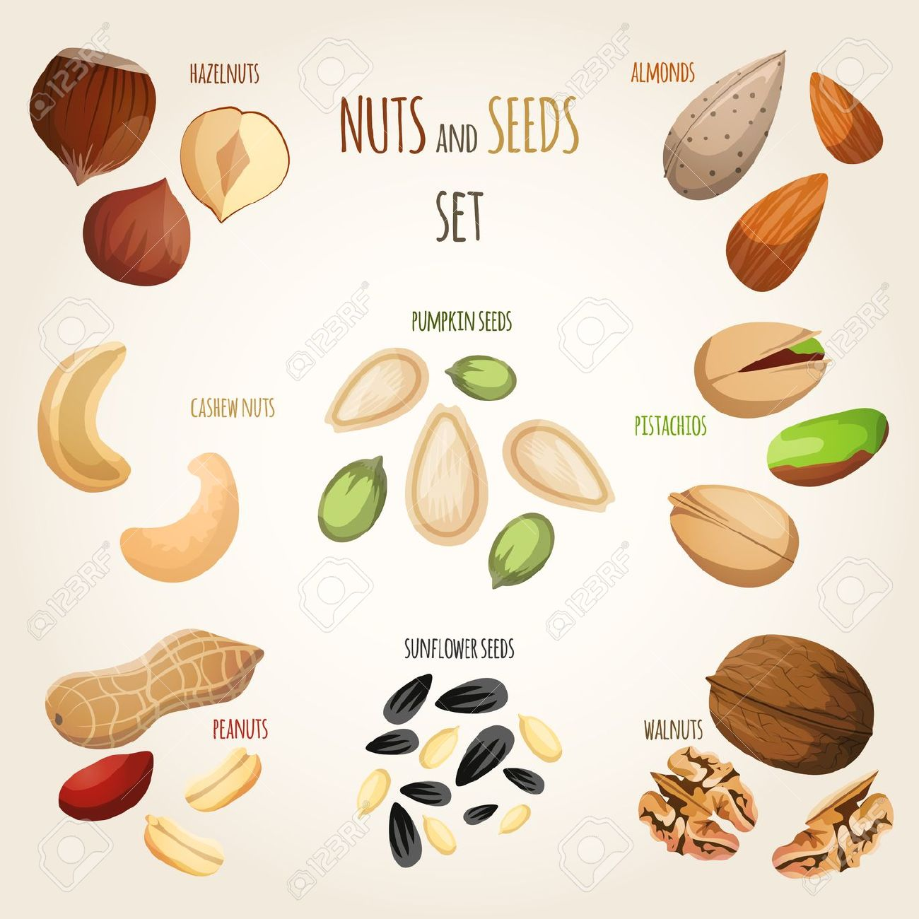 seed mix clipart clipground