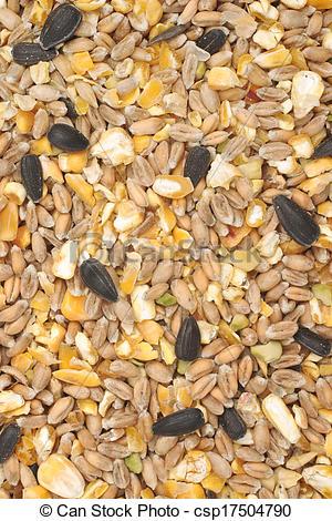 Stock Photographs of Bird seed mix.