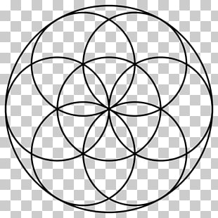 Seed of Life Acupuncture Overlapping circles grid Sacred.