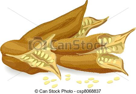 Seed pods Clipart Vector and Illustration. 1,004 Seed pods clip.