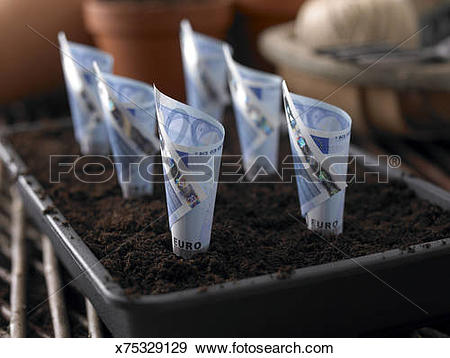Stock Photograph of Euro Notes Planted in Seed Tray x75329129.