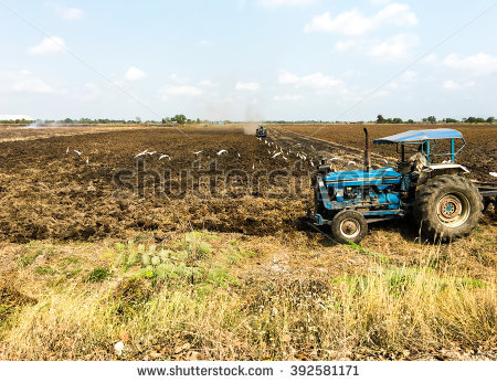 Seedbed Preparation Stock Photos, Royalty.