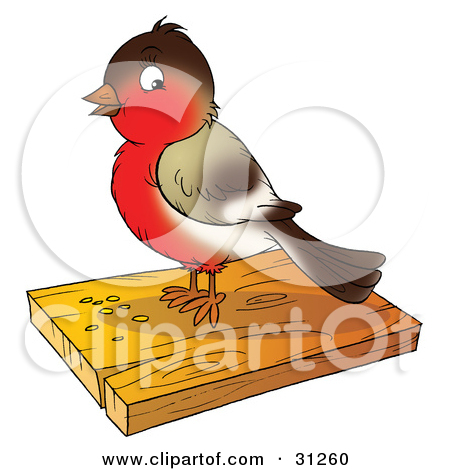 Clipart Illustration of a Cute Brown And Robin Bird Eating Seed On.