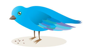 Gallery For > Bird Eating Seed Clipart.
