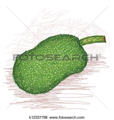 Clip Art of breadfruit seeded variety whole k12337798.