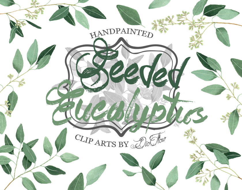 Eucalyptus greenery clipart willow seeded clip art greenery.