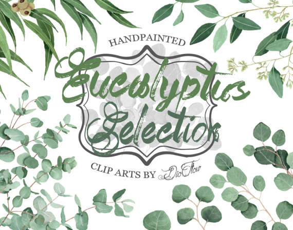 Eucalyptus Clipart Greenery Clip Art Eucalyptus by DioFlow on Etsy.