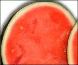 Fruit Clip Art Download.
