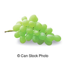 Seedless grapes Clipart Vector and Illustration. 30 Seedless.