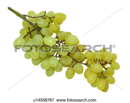 Picture of Seedless, Grapes, Fruits, Fruit, Juice, Drink, Sweet.