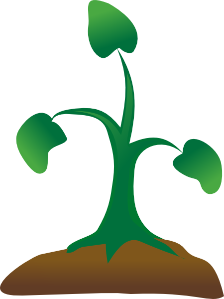 Free Seedling Cliparts, Download Free Clip Art, Free Clip.