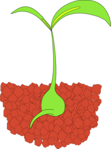 Seedling Clip Art at Clker.com.
