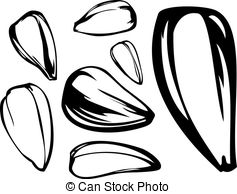Seeds Clipart Vector and Illustration. 30,665 Seeds clip art.