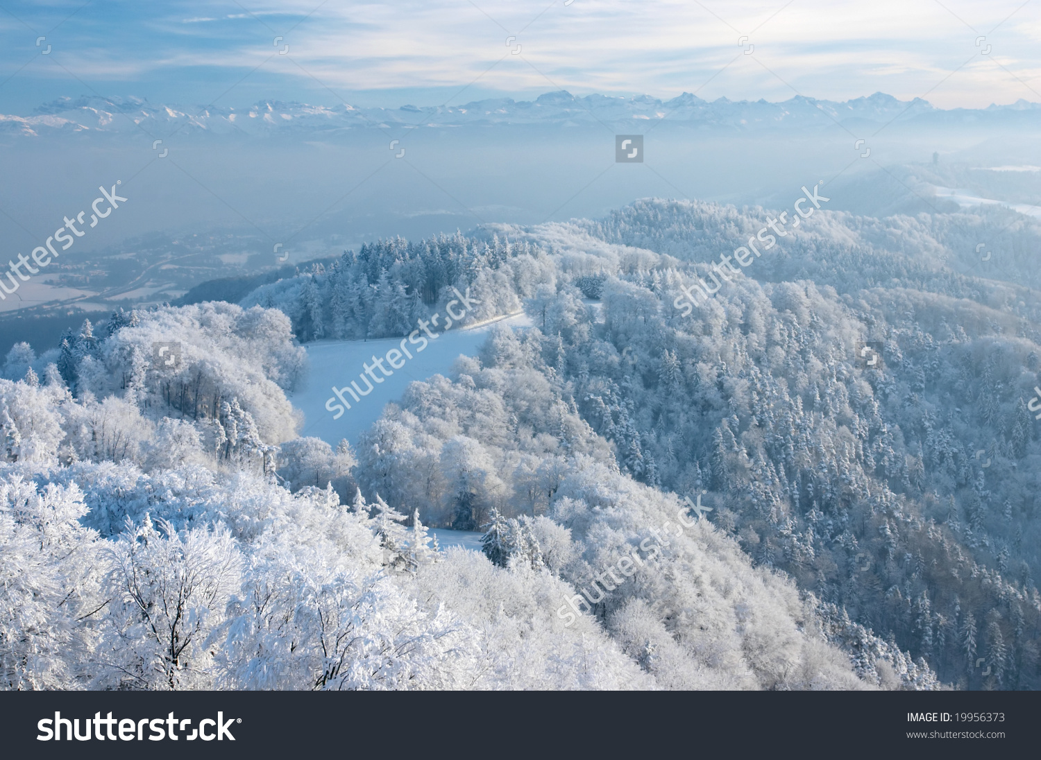 Wonderful Winter Day Trees Covered White Stock Photo 19956373.