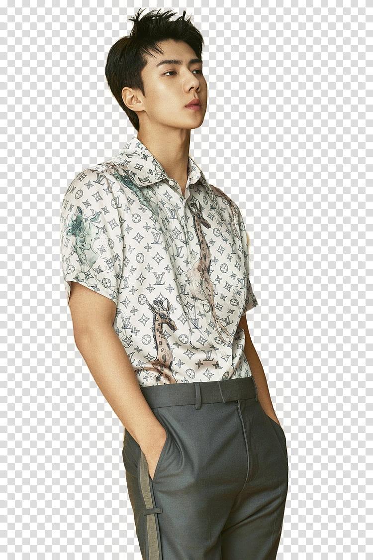 Sehun EXO L OPTIMUM , man in white collared top transparent.