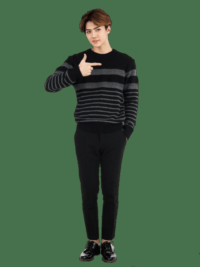 EXO Sehun Posing transparent PNG.
