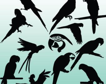 Parrot stencil.