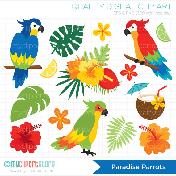 Parrots Clipart Tropical Birds Palm Leaves by MyClipArtStore.