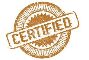 Sellos DE Certificados Stock Vector.
