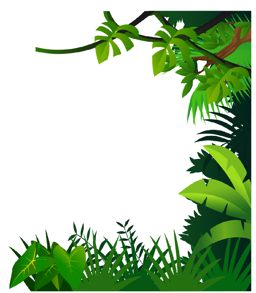 Selva png clipart images gallery for free download.
