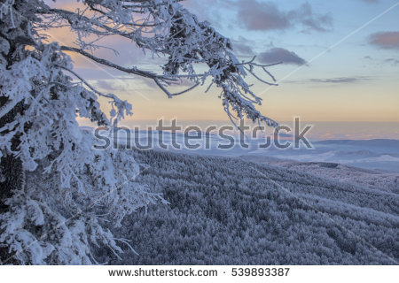 Winter Scenes Stock Photos, Royalty.